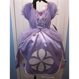 Custom Disney's Sofia the First Costume Size 7/8